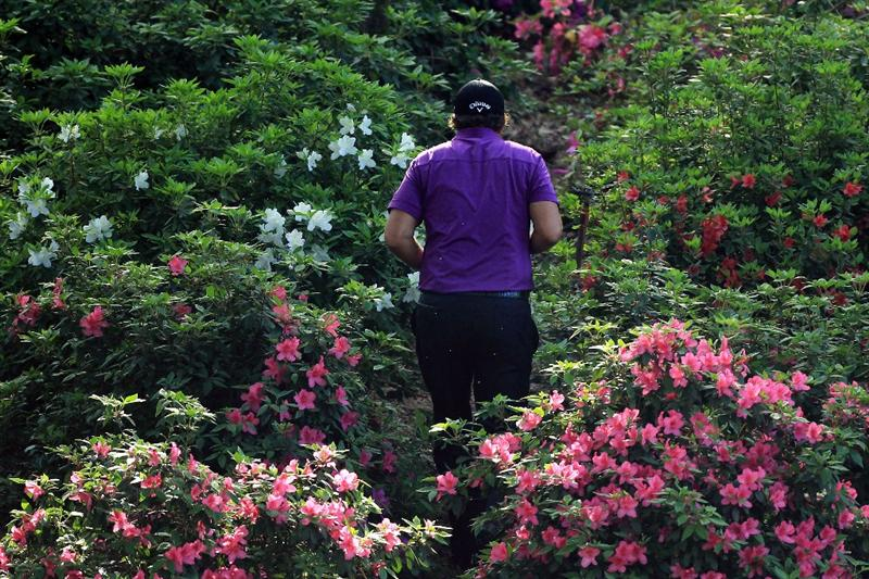 AUGUSTA, GA - APRIL 07:  Phil Mickelson looks over his second shot from the flowers on the 13th hole during the first round of the 2011 Masters Tournament at Augusta National Golf Club on April 7, 2011 in Augusta, Georgia.  (Photo by David Cannon/Getty Images)