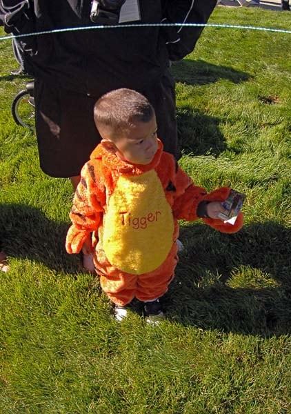 Kid dressed as Tigger