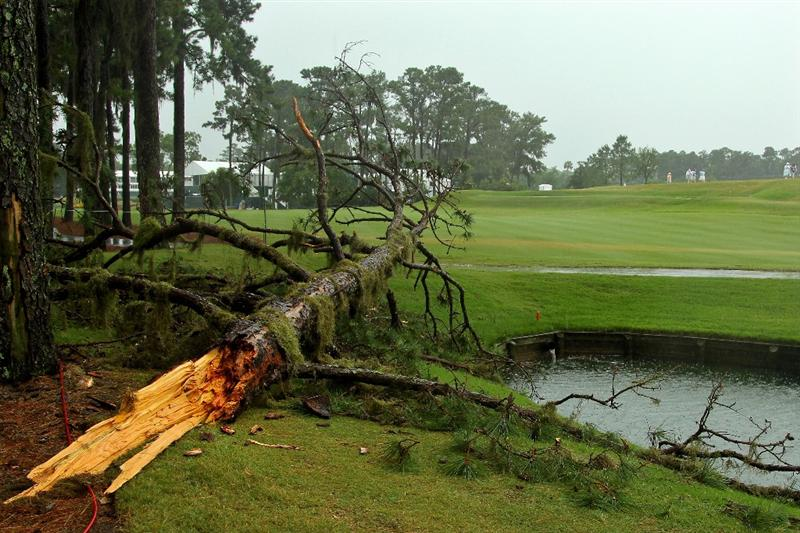 PONTE VEDRA BEACH, FL - MAY 14:  A downed tree player left of the 16th tee is seen after play was suspended due to severe storms during the third round of THE PLAYERS Championship held at THE PLAYERS Stadium course at TPC Sawgrass on May 14, 2011 in Ponte Vedra Beach, Florida.  (Photo by Mike Ehrmann/Getty Images)