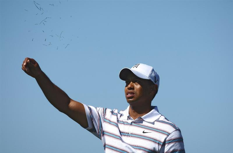 MARANA, AZ - FEBRUARY 26:  Tiger Woods checks the wind during his second round match against Tim Clark at the Accenture Match Play Championships at the Ritz-Carlton Golf Club at Dove Mountain on February 26, 2009 in Marana, Arizona. (Photo by Donald Miralle/Getty Images)