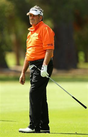 PERTH, AUSTRALIA - NOVEMBER 19:  Sam Torrance of Scotland looks on during day one the 2010 Australian Senior Open at Royal Perth Golf Club on November 19, 2010 in Perth, Australia.  (Photo by Paul Kane/Getty Images)