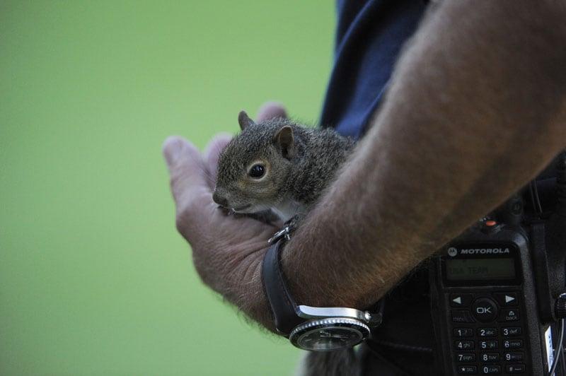 Davis Love III and Sammy the squirrel