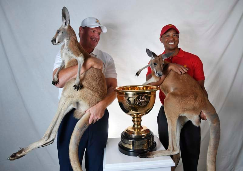 Tiger Woods and Ernie Els