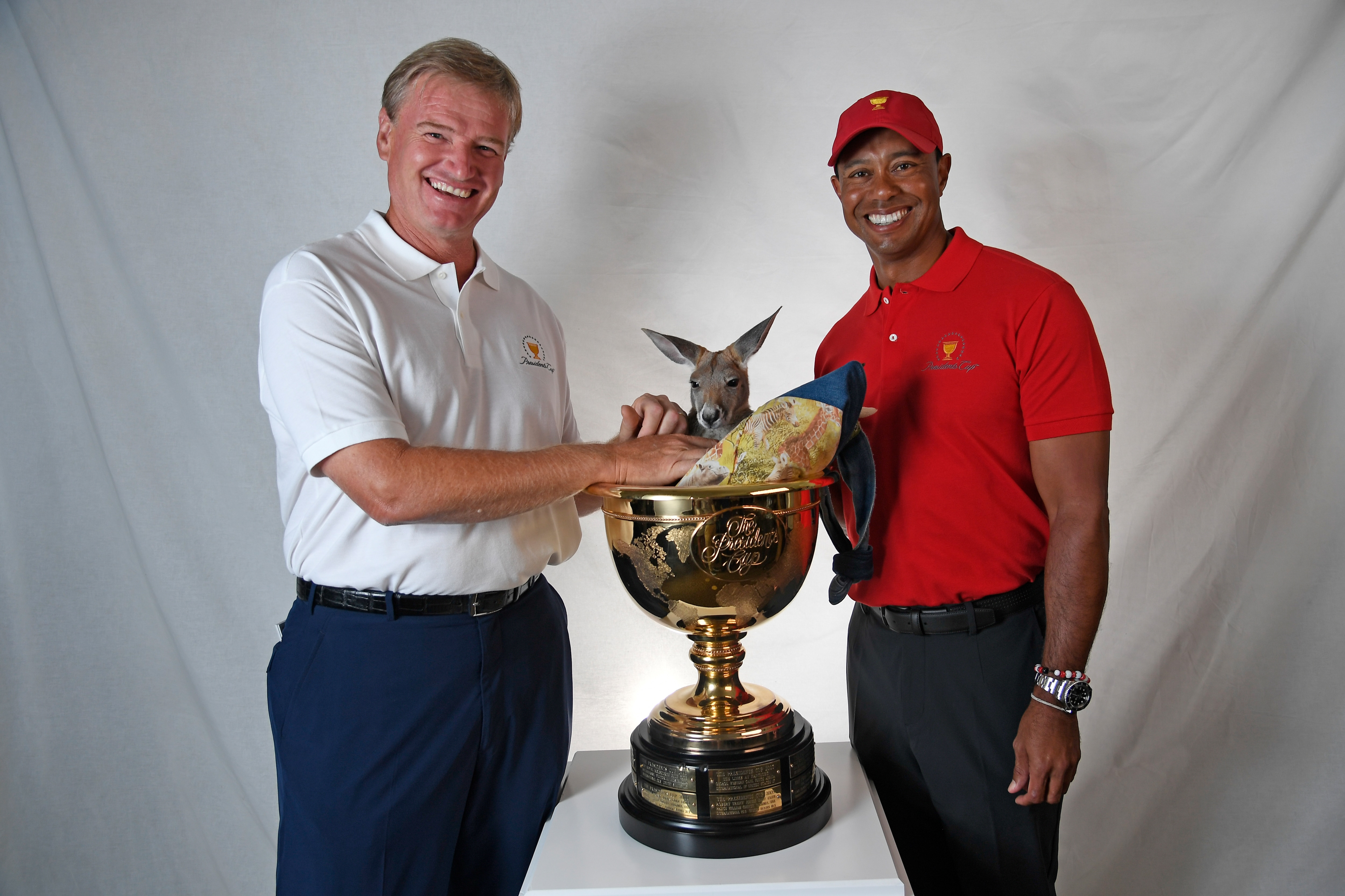 Ernie Els and Tiger Woods
