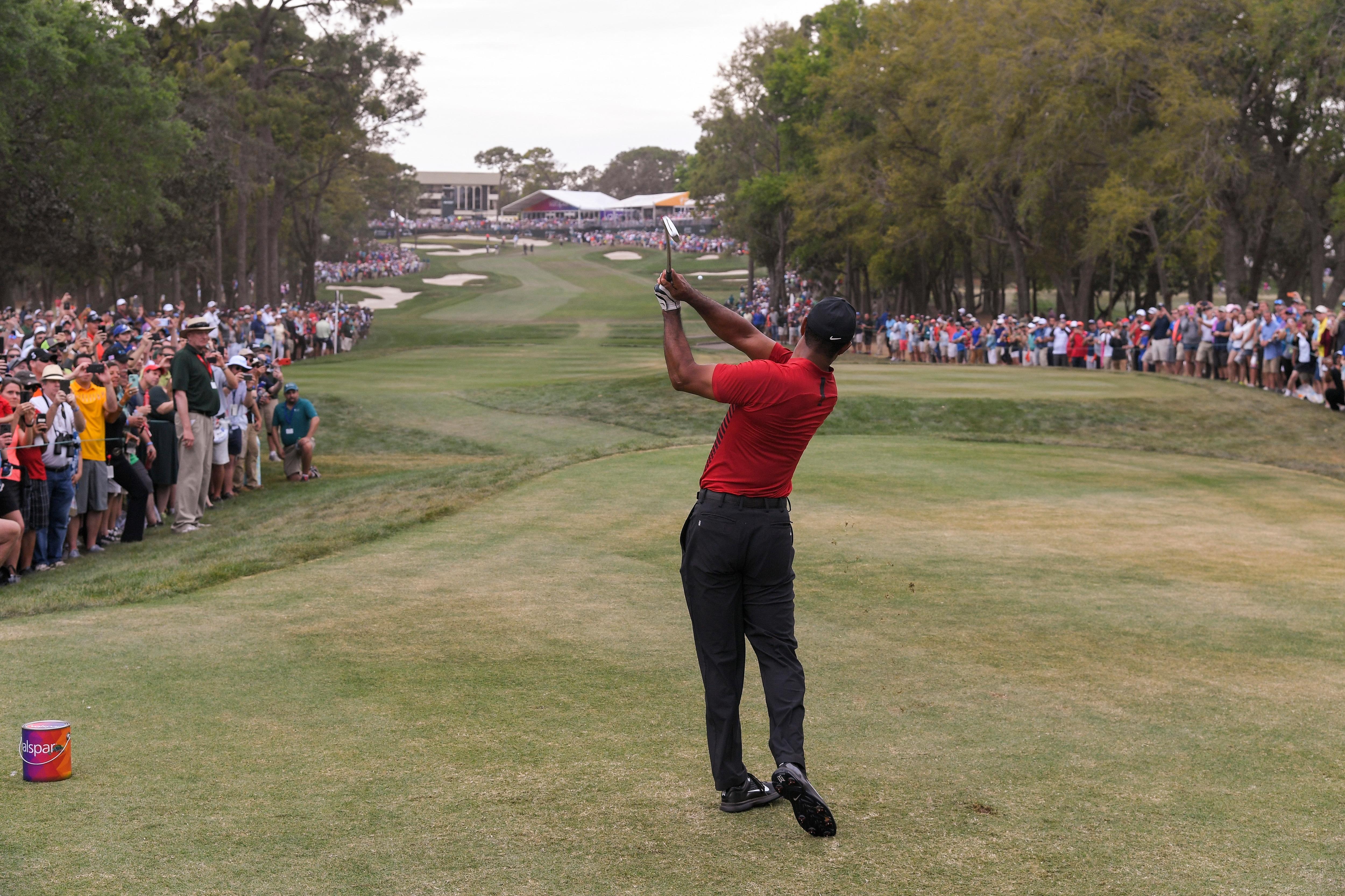 Tiger Woods at the 2018 Valspar