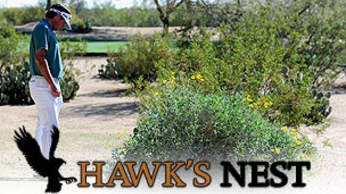 Bubba Watson Waste Management Phoenix Open Questionable Drop Golf