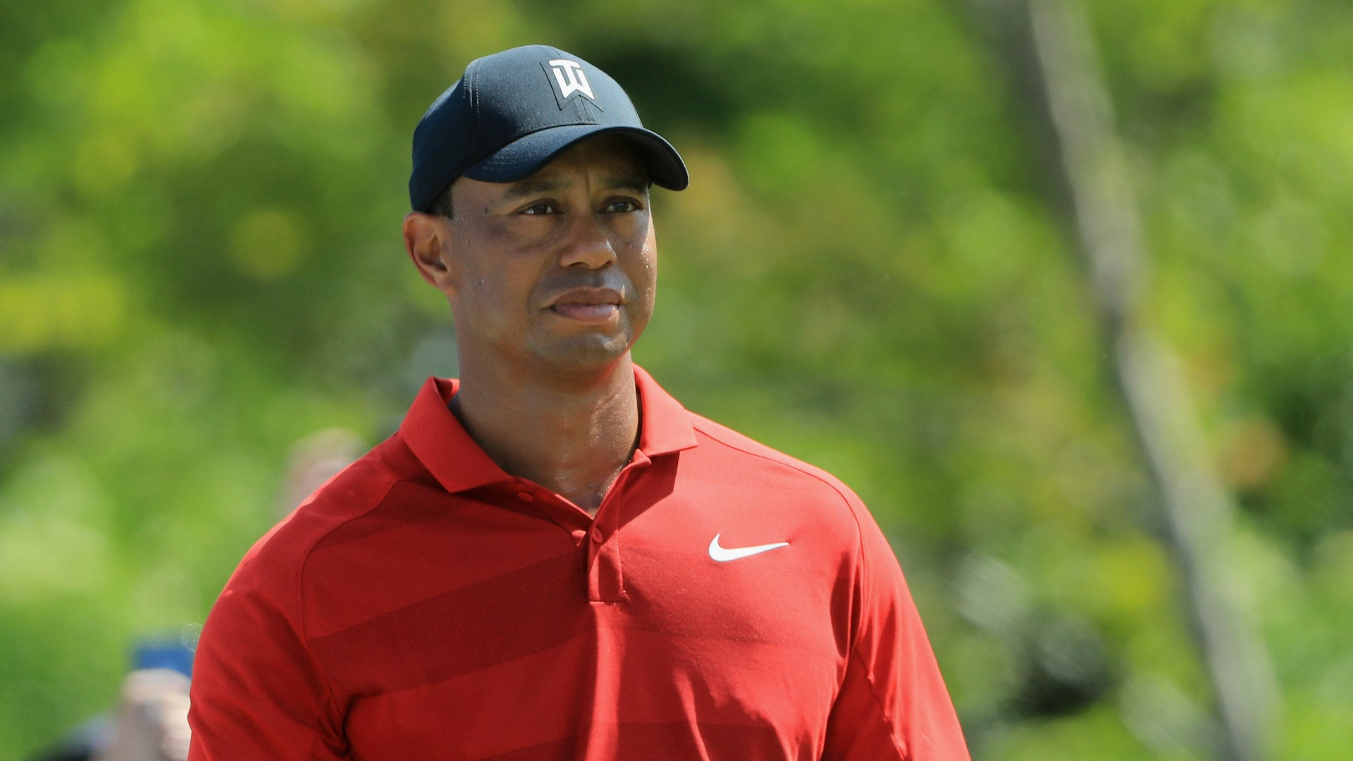 tiger u0026 39 s agent   u0026 39 egregious errors u0026 39  in  u0026 39 tiger woods u0026 39  book