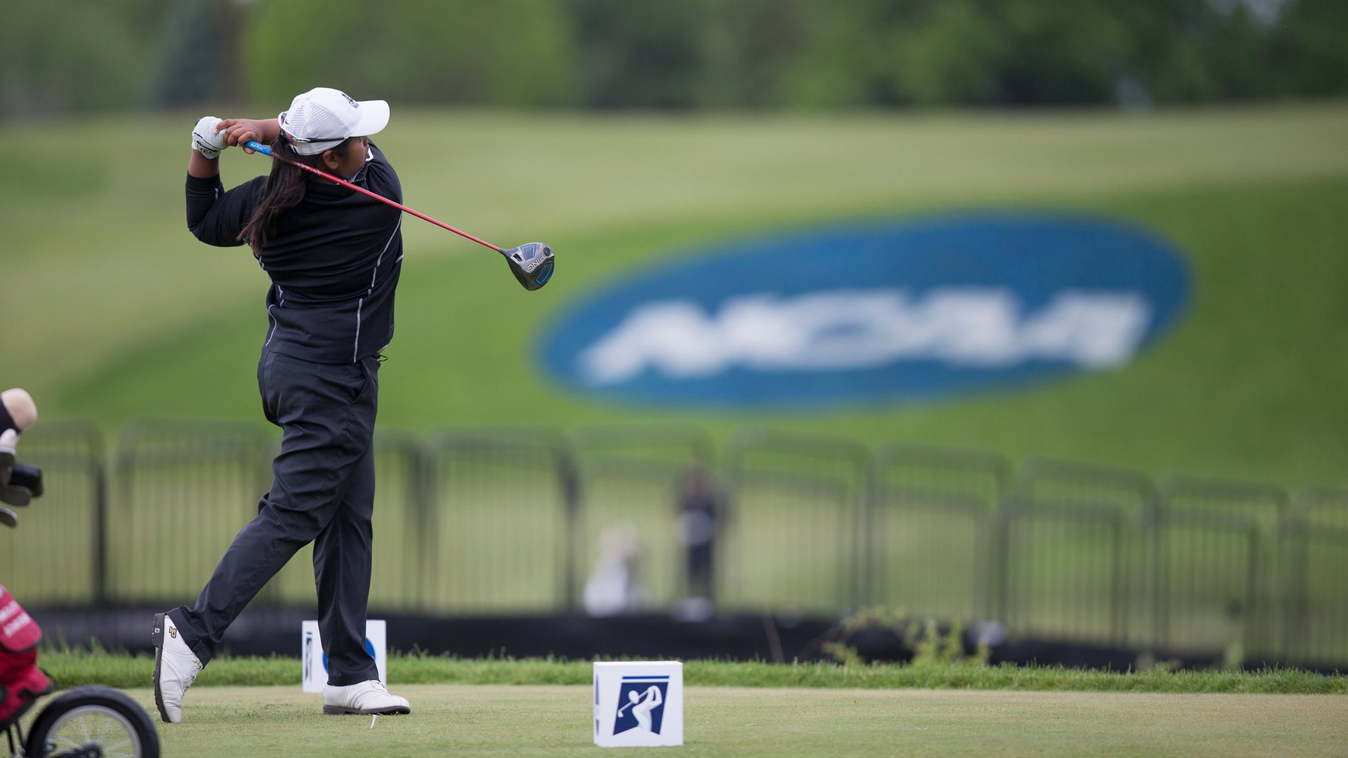 Monica Vaughn Wins Ncaa Individual Title Northwestern Low Team Golf Channel